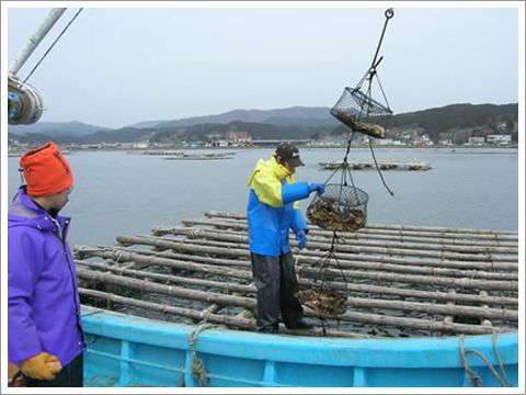 牡蠣筏 三陸 宮城 三陸志津川