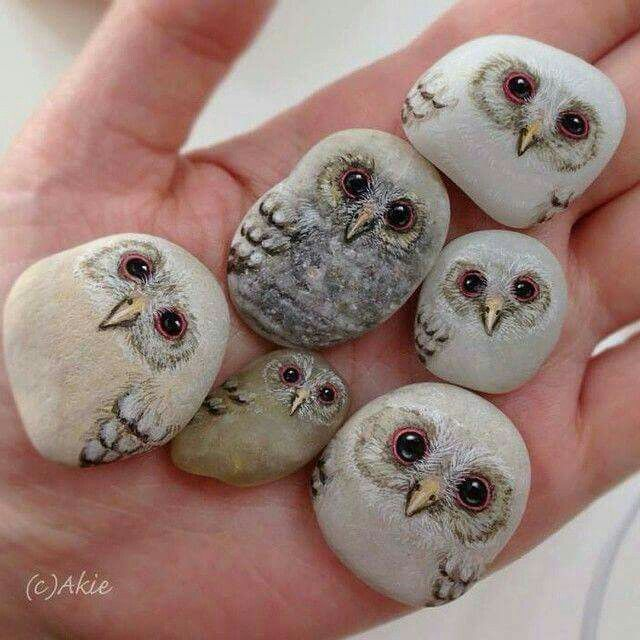 Hand painted owl rocks kids beach camp pinterest for Owl fish store