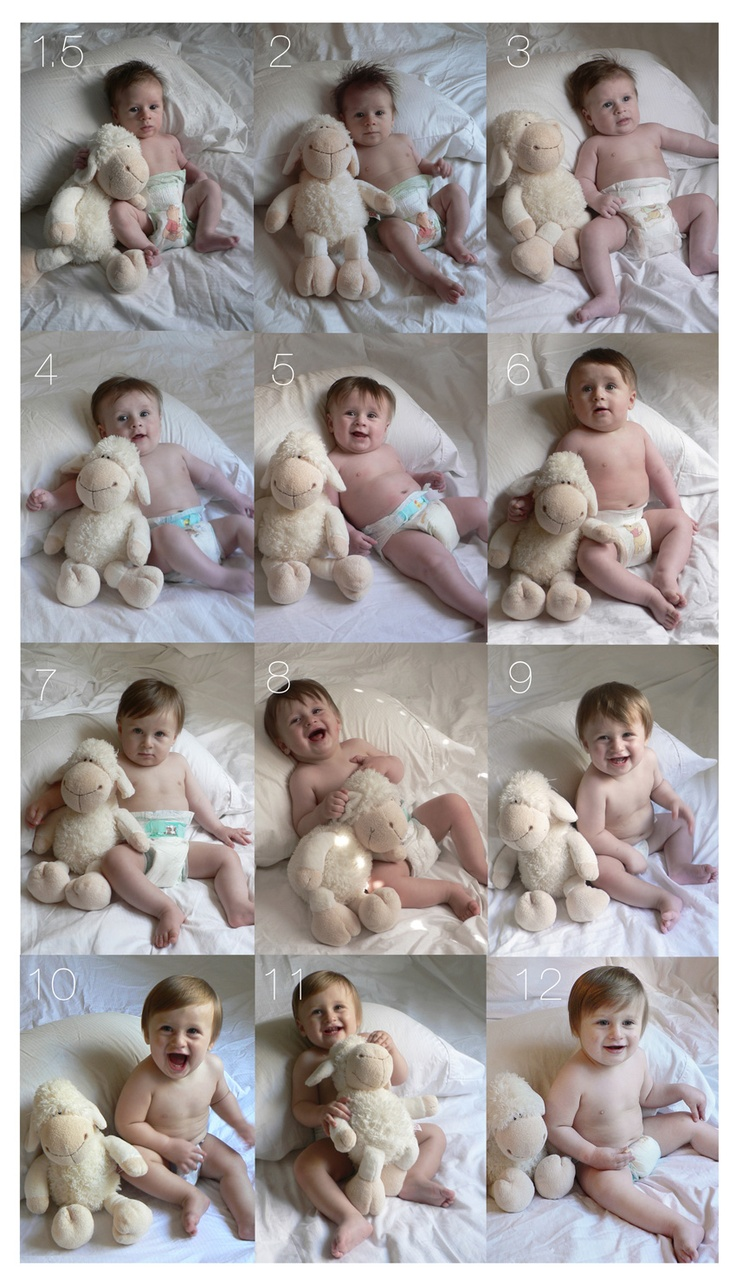 monthly pics.. Did this with Hayden's first year