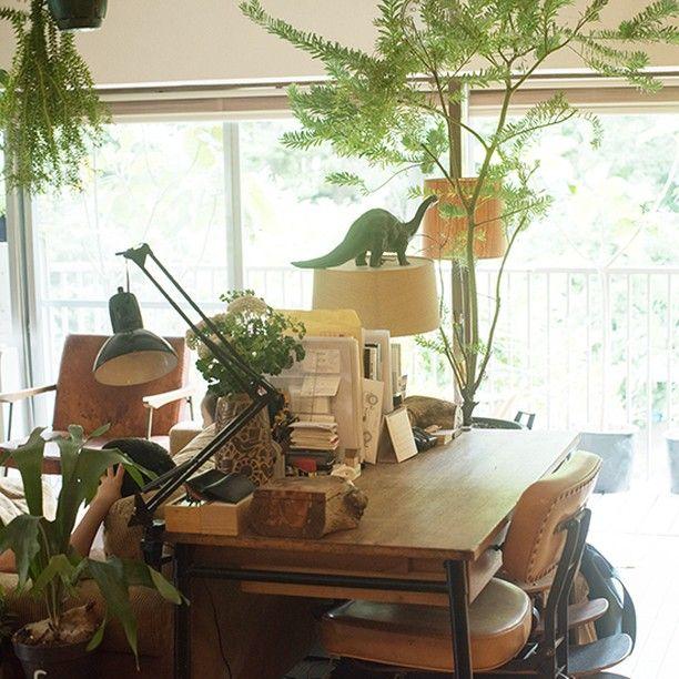"""東京 代々木にあるイタリアンレストラン『LIFE』のオーナーシェフ 相場 正一郎さんは、緑溢れる公園に面したヴィンテージマンションにお住まいです。リビングには、元気な植物がたくさん! 天井から吊るしたり、机の上に置く事で、自然に包まれているような気持ちいい空間になっているようです。 恐竜にとっても居心地がいいみたい。(葉っぱをむっしゃむっしゃ食べられて、幸せそうに見えませんか?) ・ ★相場さんのお話とインテリアを楽しめる特集は """"読みもの"""" にチェックを入れて「相場正一郎さん」を検索するとご覧いただけます。ぜひ! #北欧暮らしの道具店 #インテリア #リビング #暮らし #くらし #日々#リネン#植物#グリーン"""