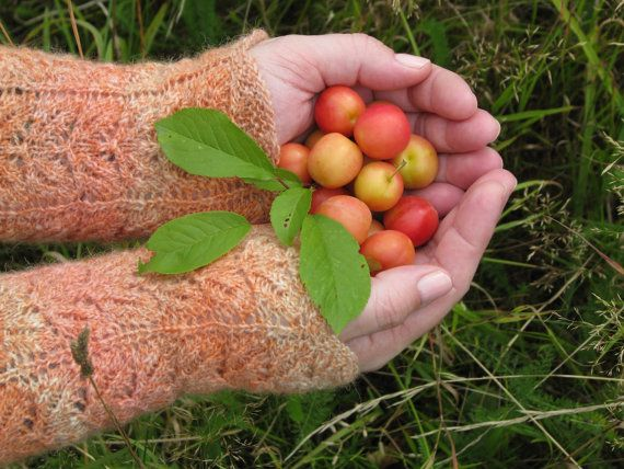 Knitted Fingerless Gloves Orange Wool by AGirlNamedMariaDK on Etsy #gloves #fingerless #mitten #mittens #glove #wrist #wrists #warmer #warmers #wool #orange #tangerine #yellow #victorian #lace #knit #knitted #knitting #knitwear #women #womens #woman #girl #girls #girly #fashion #winter #fall #autumn #spring #denmark #danish #scandivania