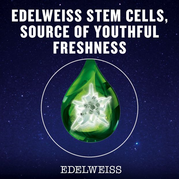 We carefully and sustainably extract the Edelweiss stem cells. We harness their powerful resilience to deliver skincare products with potent skin cell renewing properties.