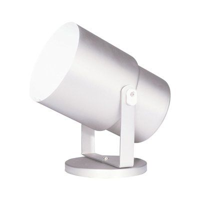 Dainolite Lighting DXL15 Floor Pod Directional Spot Light