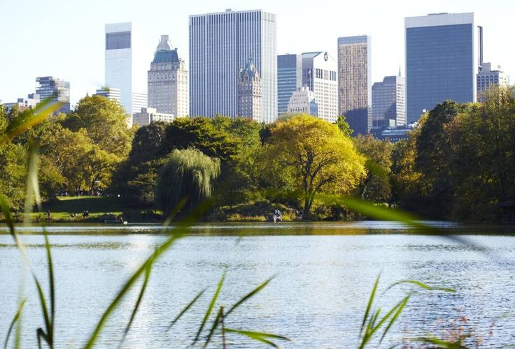 Local flavor: Green escapes. In a city as urbanized as NYC, locals embrace their parks as welcome refuges from the relentless pace of...everything else.