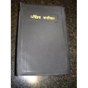 Punjabi C.L. Bible / Common Language Version   $49.99