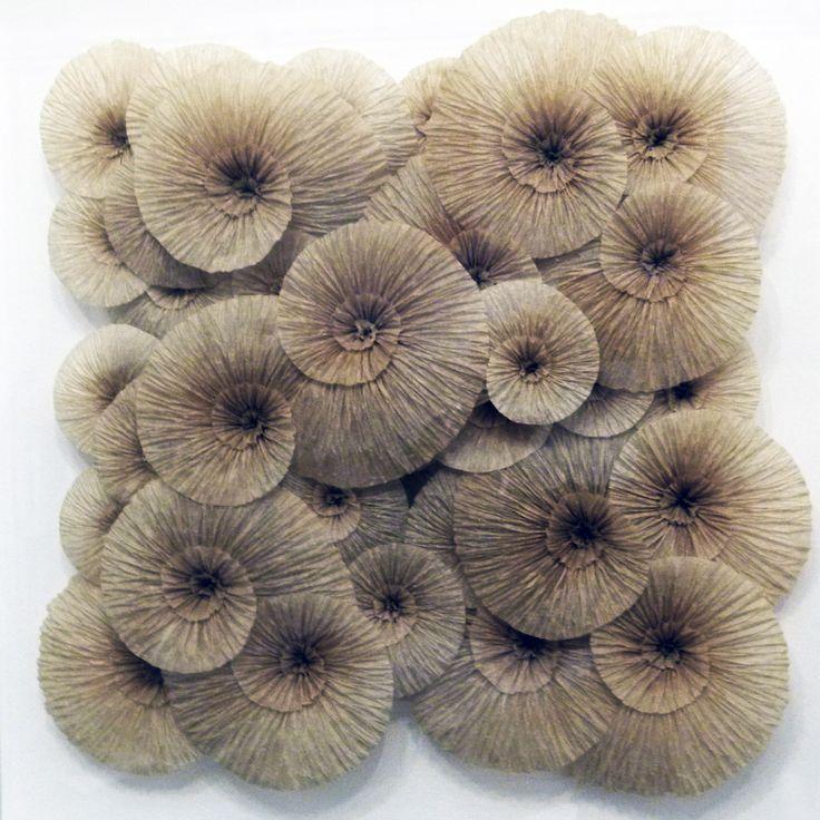 Ammonites papier de soie plissé