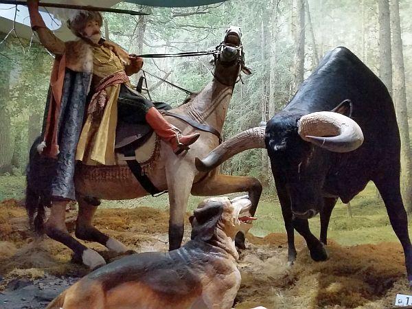 bialorus_park_narodowy_puszczabialowieska_muzeum