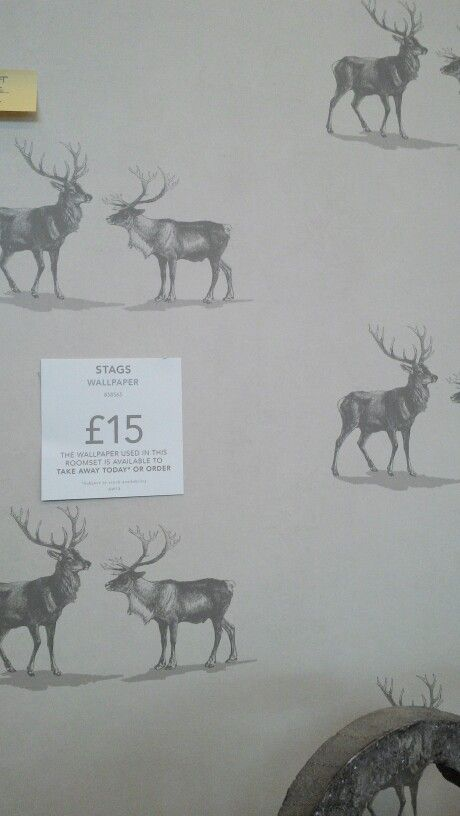 absolutely love this stag wallpaper from next home
