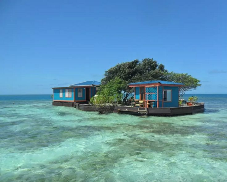 AirBnb Private Island | Stann Creek Belize | Bird island