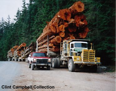 Kenworth 850 logging trucks well loaded.