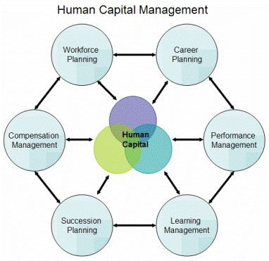 what is the human capital management commerce essay Essaystudio is your personal custom essay writing service what can we do for you every student is unique, with individual school troubles and a million different.