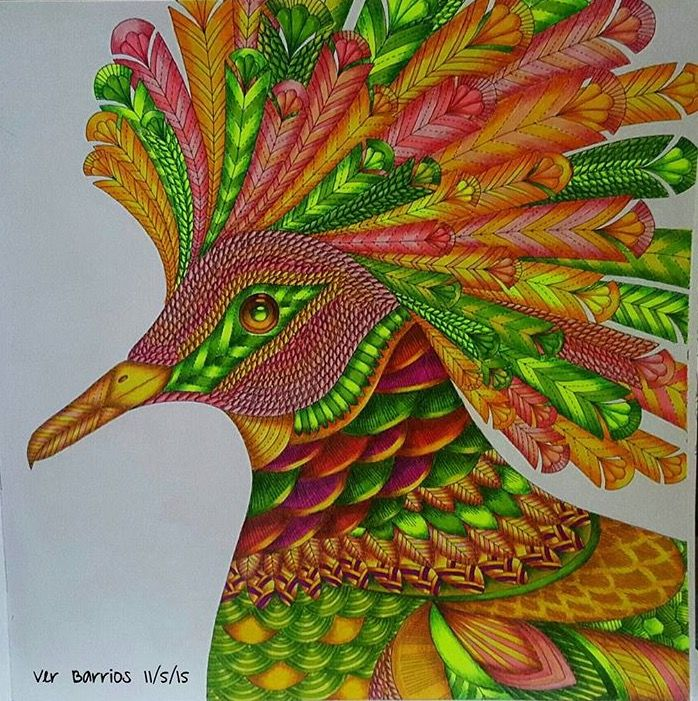 Inspirational Coloring Pages By Vddeguzman Inspiracao Coloringbooks Livrosdecolorir Jardimsecreto Secretgarden