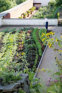 Läckö slott Med fingrarna i (j)orden: Garden Ideas, J Orden, Growing Vegs, Edible Garden, Med Fingrarna, Kitchen Garden, Garden Growing, Growing Groceries