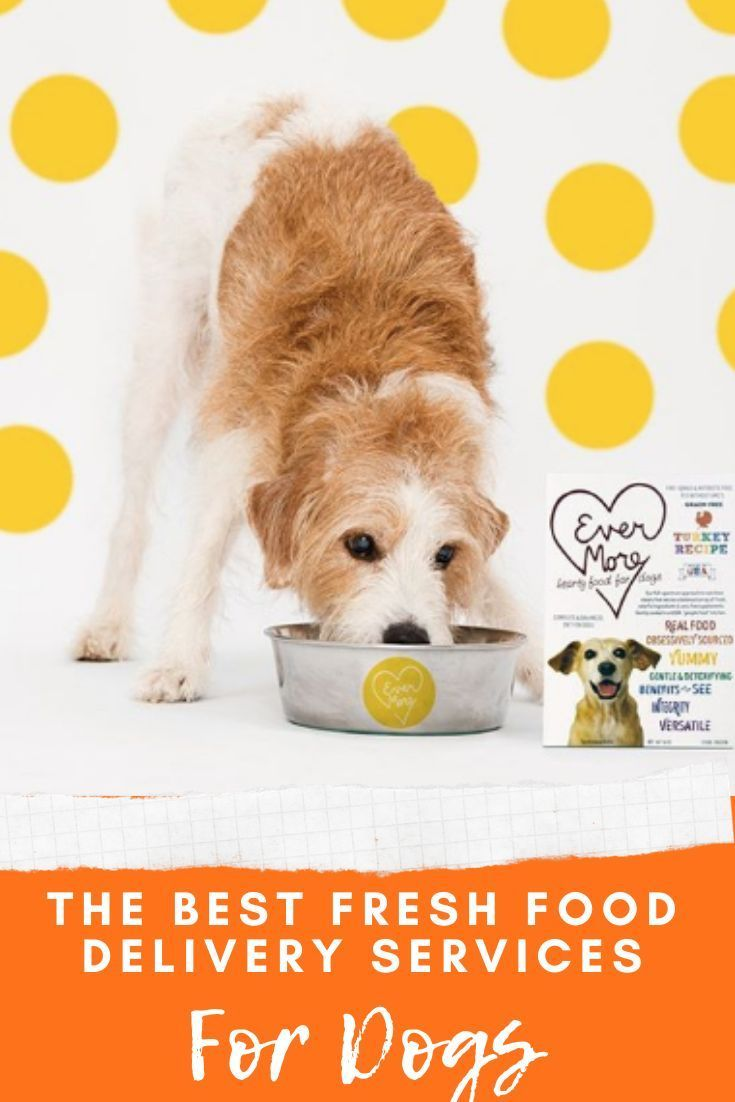 The Best Dog Food Delivery Services In 2020 Dog Food Delivery Meal Delivery Service Best Dog Food
