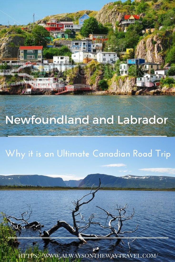Newfoundland and Labrador can be very expensive to visit, but this Canada's easternmost province is more beautiful than you could possibly imagine.