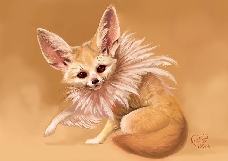 110 besten fennec fox bilder auf pinterest f chse anime - Pagina da colorare fennec fox ...