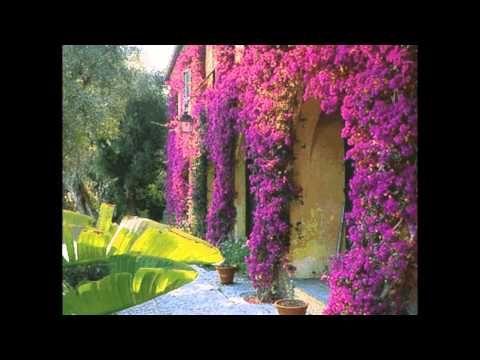 Красивые опоры для вьющихся растений.Элементом садового украшения могут стать железные решетки, проволочные плетни, деревянные трельяжи, веревочные натяжки, ...