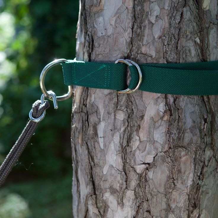 Tree Hugger Set of 2 Hammock Straps - TREEHUGGER
