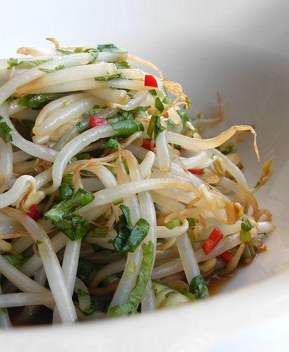 Deze frisse taugé salade kan tot een dag van tevoren klaargemaakt worden, de smaken trekken er dan lekker in. Lunchtdicht in de koelkast bewaren. Lekker bij gerechten met koud vlees of op een pickn…
