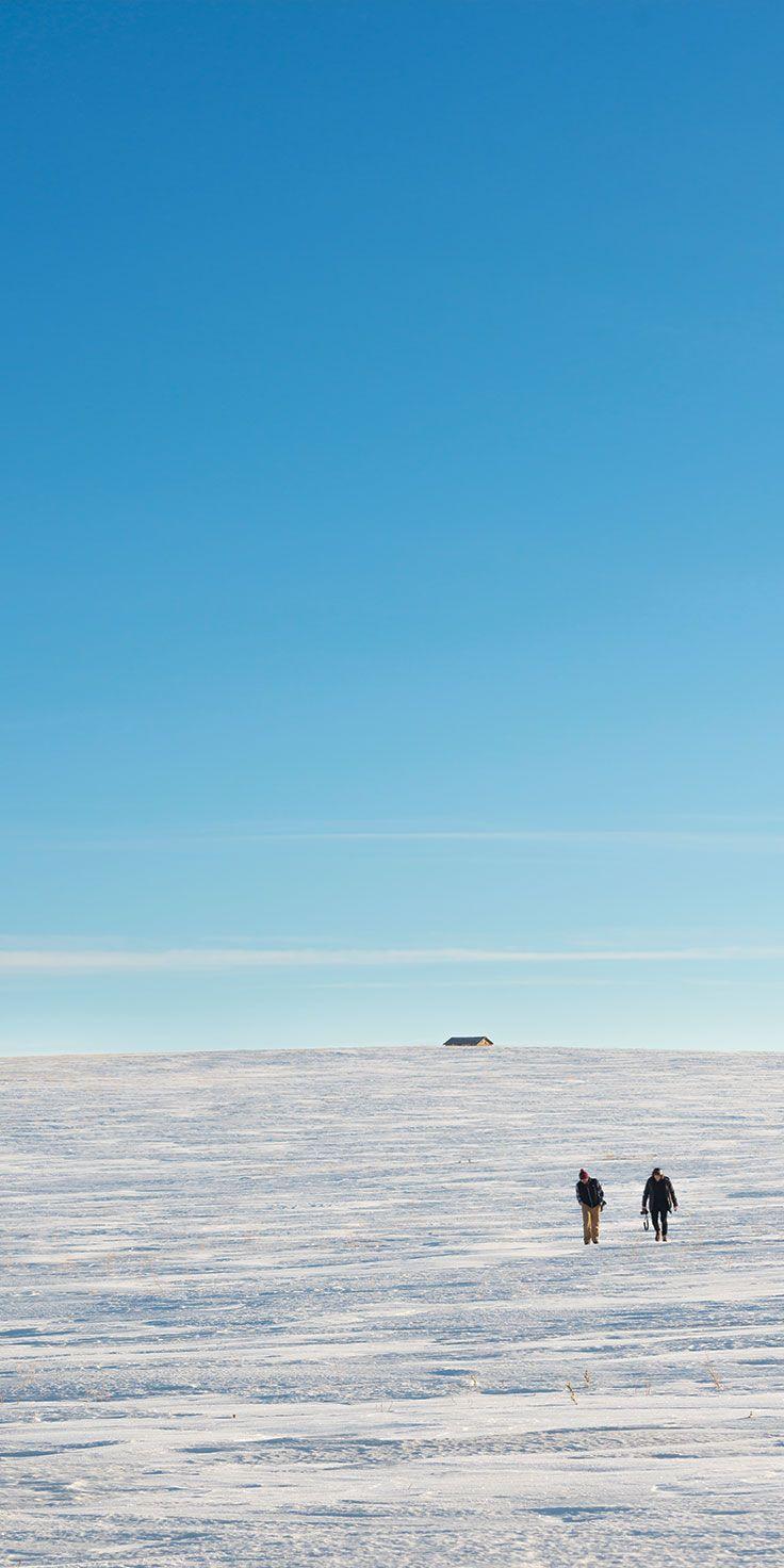 Winter landscapes in Alberta, Canada by @laurenepbath on IG