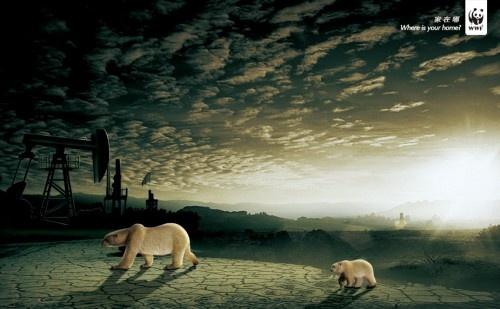 WWF7.jpg
