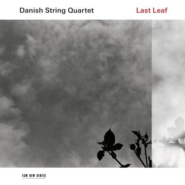 Last Leaf (2017) by Danish String Quartet on iTunes ★★★★★ Classical ここまで胸の奥に深く沁みわたる音楽に出会ったの、いつぶりだろう。数曲フル視聴した時点で、すでにこう思った。「間違いなく傑作。2017年のベストアルバムかも」。【inspiration IV】の最初で紹介したMV視聴時に(''The Dromer''を聴いて)感じた鳥肌が、実は「ほんの序章にすぎなかった」と言ったら、言いすぎだろうか。できることならアルバム全編通しての視聴を推薦したいけど、ピンポイントに聴くなら以下の6曲。オリジナルの''Shore''と''Shine You No More''、''Fastän''。トラディショナルなら''The Dromer''に加えて''Æ Rømeser''と''Staedelil''。デンマークやフェロー諸島(デンマークの自治領)に伝わる音楽がこんなにも美しいものだとは知らなかった。バロック/クラシック全般、スコットランド民謡が好きな人にもおすすめの逸品。Highly recommended.