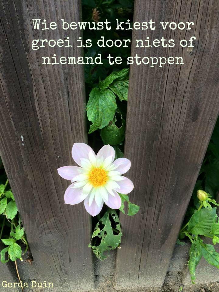 Wie bewust kiest voor groei is door niets of niemand te stoppen!