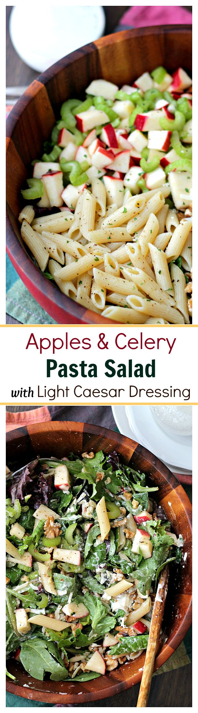 Apples and Celery Pasta Salad with Light Caesar Dressing - Penne Pasta tossed with Gala apples, celery, walnuts and a lightened-up, homemade Caesar Dressing. The textures and flavors make this salad absolutely irresistible!