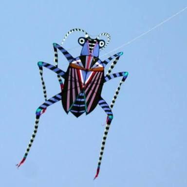 Resultado de imagen para box kites awesome