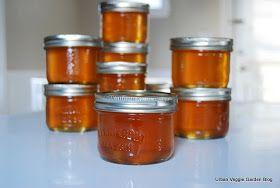 Urban Veggie Garden Blog: Cider Jelly Recipes