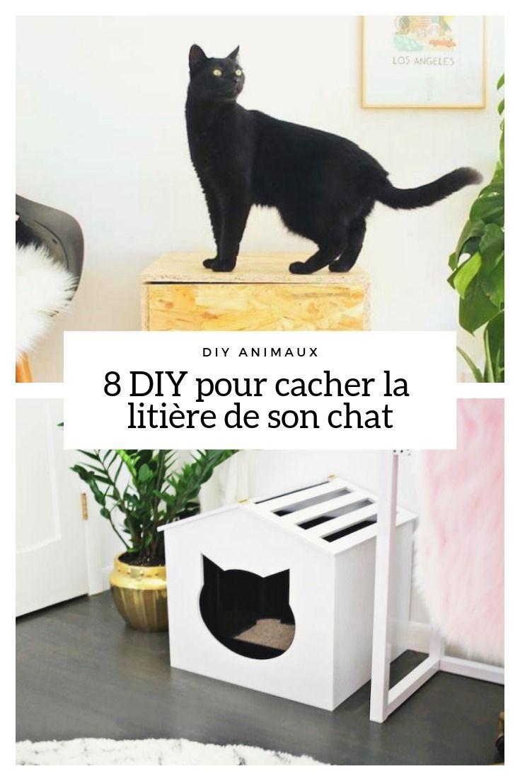 8 Idees Pour Fabriquer Un Meuble Cache Litiere Pour Chat Litiere Chat Maison Litiere Chat Lit Pour Chat