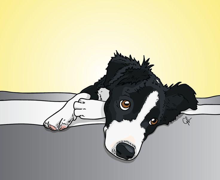 June Carter - Border Collie Pet Portrait - Dog Illustration by Grace LeBeau 2013