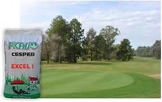 Semillas de Césped Picasso. Blend de 3 variedades Ryegrass Perenne Importado (Turf Type).  Para lograr una resiembra profesional. Semilla de cesped, con las mismas variedades que usan los clubes de golf para resembrar sus greens.