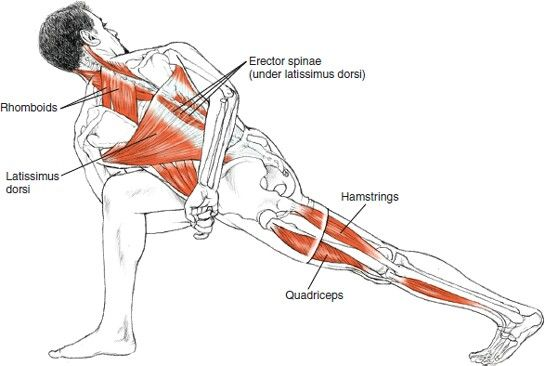 Revolved Side Angle+Strengthens the arches, ankles, knees and thighs+Stretches the hips and shoulders+Broadens the chest — Increases lung capacity — Stimulates digestion and circulation — Enhances muscular endurance — Lengthens the spine — Builds focus — Develops willpower — Stimulates the mind                                                                                                                                                      More