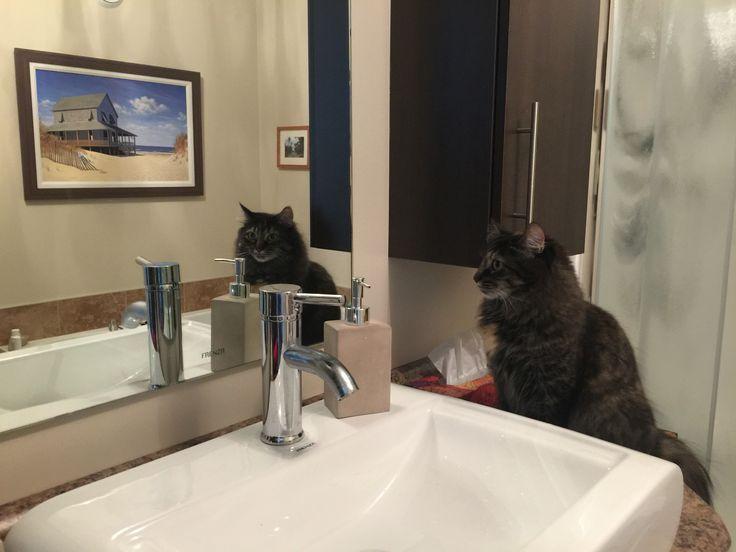 Bertha s'admire