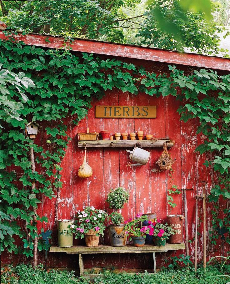 """1,648 Likes, 22 Comments - CountryHomeMagazine (@countryhomemagazine) on Instagram: """"Barn red siding, luscious ivy... We love a vintage garden. ♥️ #mycountryhome #countrygarden…"""""""