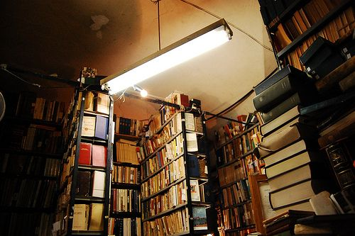 Libreria Sant'Agostino, Rome (Photo by Verdeanice): Rome Photo