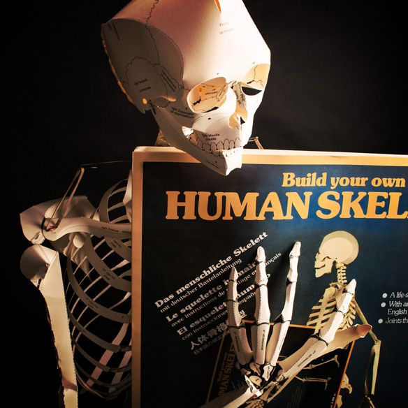 Build Your Own Human Skeleton - DamnCoolGadgets