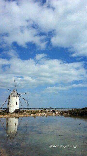 El molino de la calcetera (San Pedro del Pinatar)