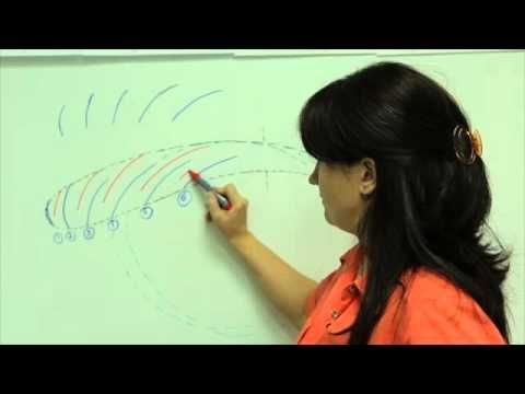 Татуаж бровей , как делается волосковый метод, микроблейдинг или растушевка 6D  HD - YouTube