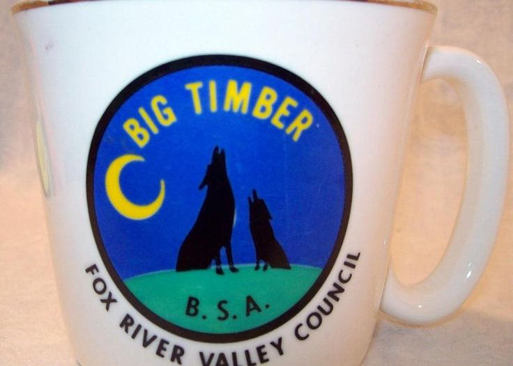 Camp Big Timber coffee Cup Boy Scout BSA Elgin Illinois Fox River Valley Council