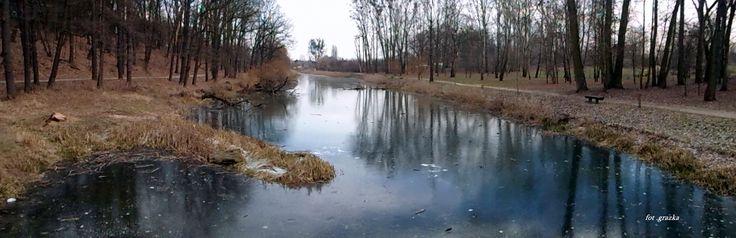 Park na Bydgoskim Przedmieściu 7 styczeń -2015
