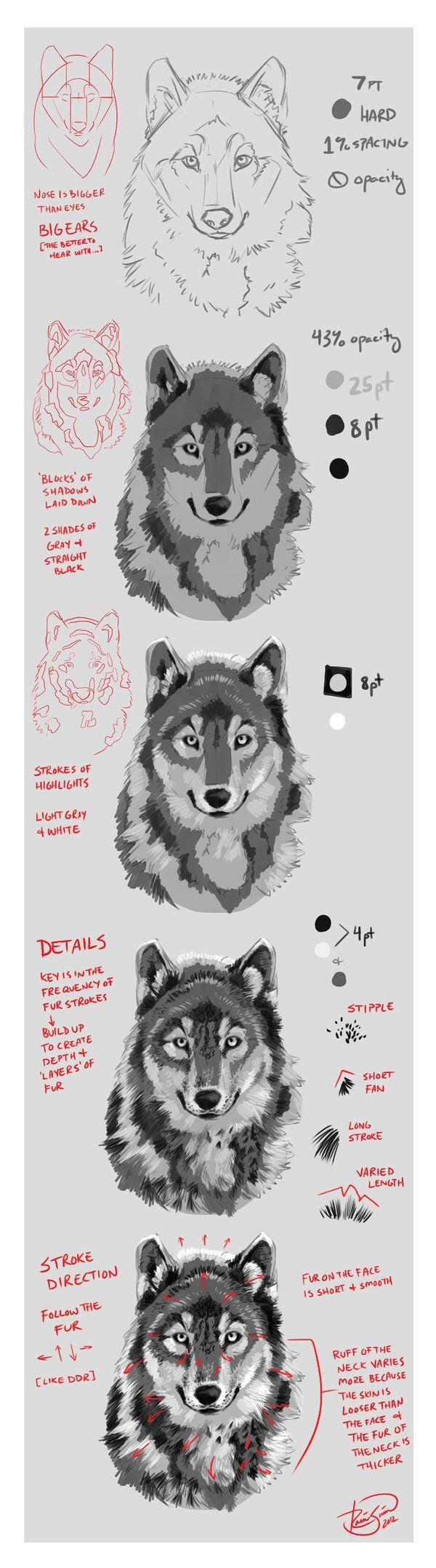 Wolf Portrait Mini-Tutorial by Junryou-na-Kokoro.deviantart.com on @deviantART: