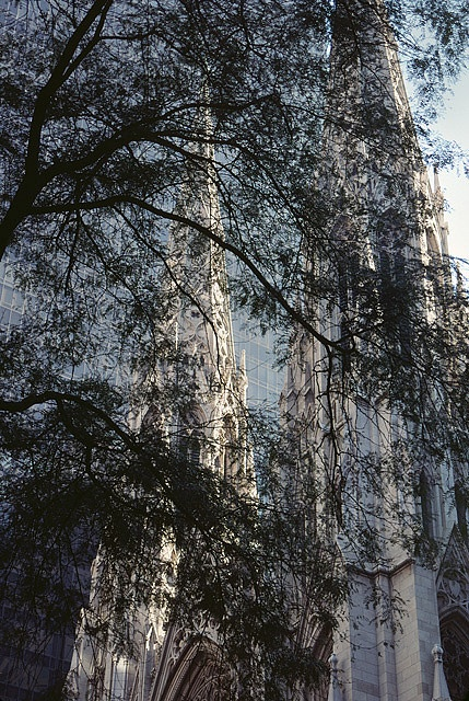 St. Patrick's Cathedral, New York by josullivan.59, via FlickrSimple Beautiful, Restless Soul, Blue Velvet, Patricks Cathedral, America Nature, World, God Places, Nature Beautiful, Amazing Architecture