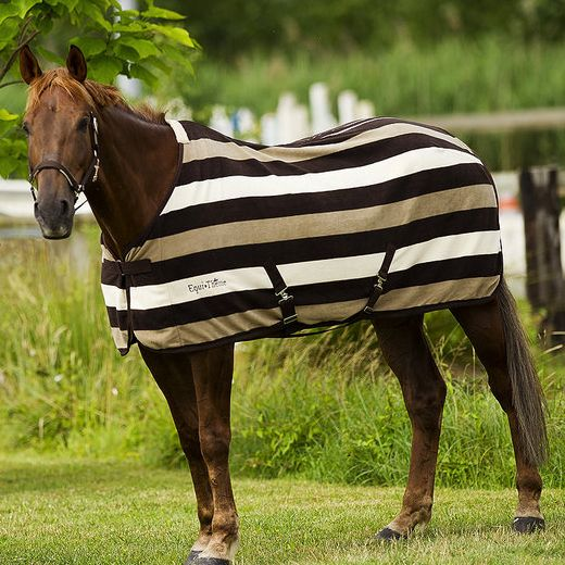 Equi Theme Stripe Polar Fleece Rug