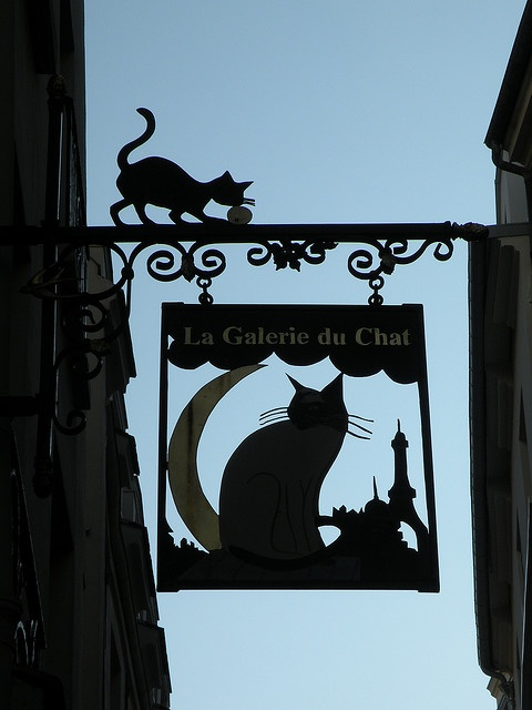 Shop sign 'La Galerie du Chat' - Paris, rue de Bièvre ~ Photo taken by Frédérique Panassac