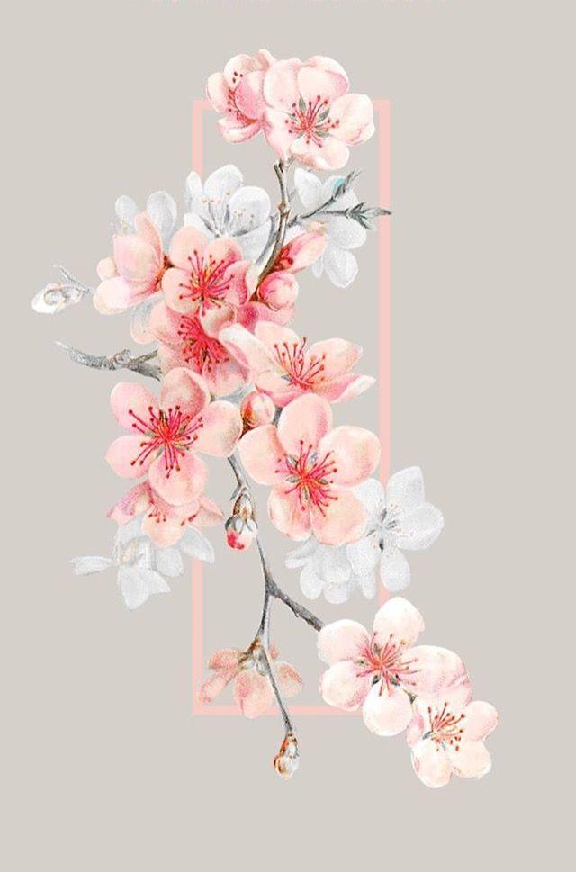 Epingle Par Rawen Noomani Sur Love Is Papier Peint A Fleurs Fond D Ecran Telephone Fleur De Cerisier Dessin