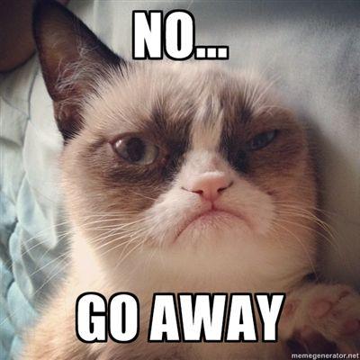 Grumpy Cat Memes No 1444 best images about...