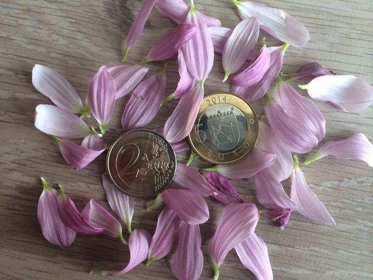 Филторг ру стоимость монеты 2 копейки 1851 года цена