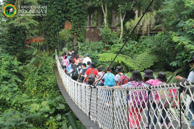 Crowded, in Muara Crocodile Bridge